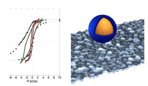 Hysteresis loops of core-shell magnetic nanoparticles (left; red: Ni cores; green: Ni@NiO core-shell, black: Ni@CoO core-shell nanoparticles). The stabilizing exchange coupling at the FM-AFM interface is clearly visible as loop shift (exchange bias). False-color SEM image of a thin film of core-shell nanoparticles and a pictorial sketch of a single nanoparticle (courtesy of prof. S. D'Addato, Università di Modena e Reggio Emilia).
